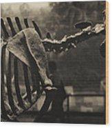 Dinosaur Bones 2 Wood Print