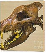 Dire Wolf Skull Fossil Wood Print