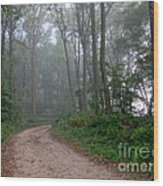 Dirt Path In Forest Woods With Mist Wood Print