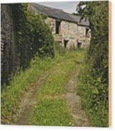 Dirt Path To Stone Building Wood Print