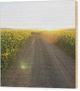 Dirt Road In Field Of Flowers Wood Print