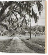 Dirt Road On Coosaw Plantation Wood Print