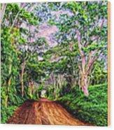 Dirt Road To Secret Beach On Kauai Wood Print