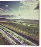 Dirt Track In Tuscany Wood Print