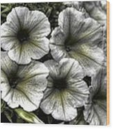 Dirty Flowers 2 Wood Print