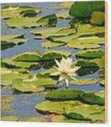 Dirty Monet Wood Print