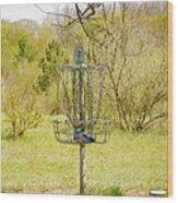 Disc Golf Basket 7 Wood Print