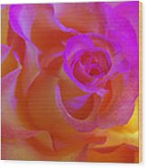 Disco Rose   Wood Print