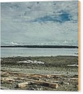 Low Tide Along The Discovery Passage Wood Print