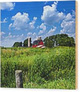 Discover Wisconsin Wood Print