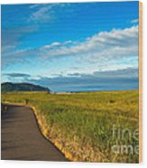 Discovery Trail Wood Print by Robert Bales