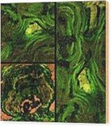 Disengage Wood Print by Tom Druin
