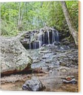 Disharoon Creek Falls Wood Print by Bob Jackson
