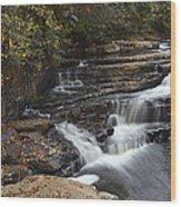 Dismal Falls Wood Print