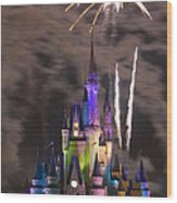 Disney Castle Wood Print