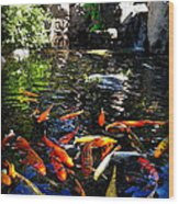 Disney Epcot Japanese Koi Pond Wood Print