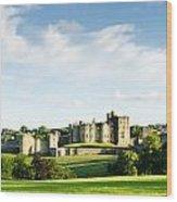 Distant Alnwick Castle Wood Print