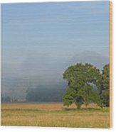 Distant Fog Wood Print