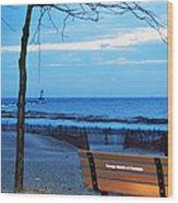 Distant Lighthouse Wood Print