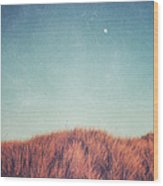 Distant Moon Wood Print