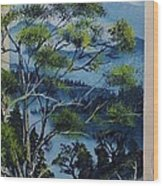 Distant Mountains Lake Wood Print
