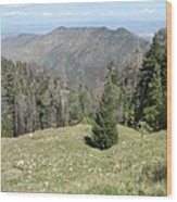 Distant View - Mount Lemmon Wood Print