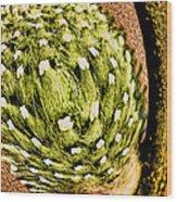 Distored Wood Print
