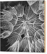 Ditch Lace Bw Wood Print