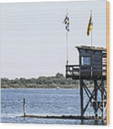 Dive Location The Scribbler Wood Print