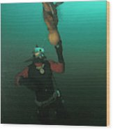 Diver With Giant Octopus Octopus Wood Print