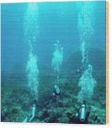 Divers Over A Coral Reef Wood Print