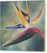 Dj's Flower Wood Print