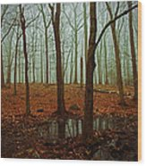 Do We Dare Go Into The Woods Wood Print by Karol Livote