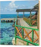 Dock And Tropical Water Wood Print