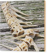 Dock Decor Wood Print by Paula Rountree Bischoff