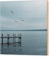 Dock On A Moody Lake Wood Print