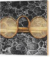 Doctor - Optometrist - Glasses Sold Here  Wood Print