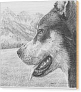 Dog And Mountains Pencil Portrait Wood Print