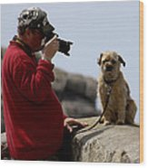 Dog Being Photographed Wood Print