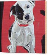 Dog Doggie Red Wood Print