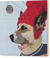 Dog In A Ski Jumper Wood Print