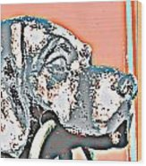 Dog Iron Door Knocker Wood Print