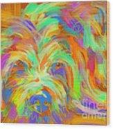 Dog Matze Wood Print