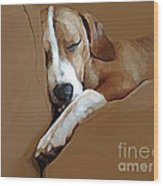 Dog - Mr. Oliver Snoozing Wood Print