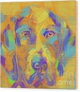 Dog Noor Wood Print