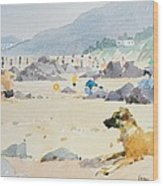 Dog On The Beach Woolacombe Wood Print by Lucy Willis