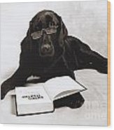 Dog Reading James Thurber Wood Print