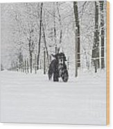 Dog Running In The Snow Wood Print