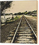Dog Walk Along The Wayzata Train Tracks Wood Print
