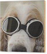 Dog With Eyeglasses Wood Print